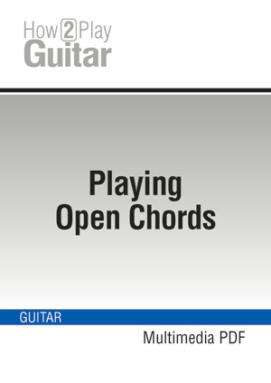 Techniques For Playing The Guitar Well Learn How To Play Guitar The